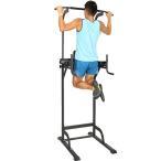 リーディングエッジ ホームジム ST 懸垂器具 腹筋 腕立て運動可能 マルチジム LE-VKR02 LEADINGEDGE パワータワー 筋トレ トレーニング 懸垂マシン