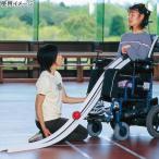 エバニュー(EVERNEW) ボッチャ用ランプス ETE032 ボッチャボール、体つくり運動 特別支援学校 教育 パラリンピック種目