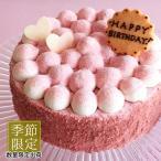 まもなく終了 季節限定 ケーキ スイーツ こだわり苺ムースとピスタチオのケーキ 14cm  誕生日ケーキ バースデーケーキ 大人 子供 お取り寄せ ギフト プレゼント