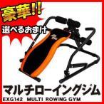 アルインコ マルチローイングジム EXG142 マルチジム EXG-142 腹筋台 トレーニングベンチ ベンチ運動 ローイング運動 ボート漕ぎ運動 筋トレマシン