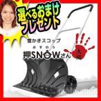 押snowさん 大関 VS-GS01 ...