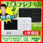 AID エコラジTV RAD-1SFAM