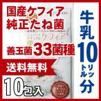 【送料無料】10リットル分 自分で作るスーパーヨーグルト【ケフィア】タネ菌