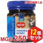 MANUKA HEALTH マヌカヘルス ニュージーランド産はちみつ マヌカハニー MGO250+ 250g 日本語表示ラベル 12個セット