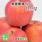 フルーツ りんご 青森りんご 青森県弘前市 赤石りんご園 青森りんご 有袋栽培ふじ 2.5kg(7玉〜10玉) 収穫時の鮮度を保つCA貯蔵りんご