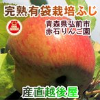 フルーツ りんご 青森りんご 青森県弘前市 赤石りんご園 青森りんご 有袋栽培ふじ 4.5kg (13玉〜20玉) 収穫時の鮮度を保つCA貯蔵りんご 送料無料