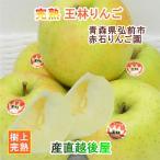 フルーツ りんご 青森りんご 青森県弘前市 赤石りんご園 青森りんご 王林 4.5kg(14玉〜20玉)収穫時の鮮度を保つCA貯蔵りんご 送料無料
