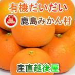 フルーツ みかん 有機栽培だいだい 佐賀県 鹿島市 有機みかん佐藤農場 有機栽培 だいだい 5kg 送料無料