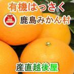フルーツ みかん 有機栽培 はっさく 佐賀県 鹿島市 有機みかん佐藤農場 有機栽培 はっさく 5kg 採りたてを農園から産地直送 送料無料