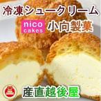 スイーツ 洋菓子 冷凍シュークリーム 青森県創作洋菓子店 小向製菓 冷凍シュー バニラ味 5個 送料無料