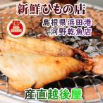 魚 干物 のどぐろ 冷凍 島根県浜田港 干物の河野乾魚店 干物のどぐろ(アカムツ) 大2枚 どんちっち 送料無料