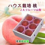 フルーツ 桃 もも  ハウス栽培 山梨県 JAフルーツ山梨 組合長推奨の 桃(白鳳系) 化粧箱5個入り 約1kg 産地直送 送料無料 予約販売