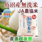 米 お米 令和元年産 新米 無洗米 30kg コシヒカリ 特A地区 魚沼産 安心のJA農協米 越後の恵み 通常包装