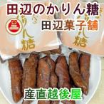 お菓子 かりん糖 新潟産 送料無料 新潟県加茂市 田辺菓子舗 かりん糖 たなべのかりん糖 10本入 5個