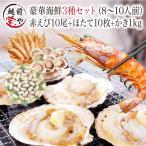 海鮮バーベキュー 海鮮セット 3種 生 赤えび 10尾 ほたて 10枚 かき 1kg セット (8〜10人前)  ギフト 海鮮鍋 海鮮丼 おせち バーベキュー BBQ *冷凍*