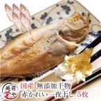 鰈魚 - 干物 カレイ 5枚入り 国産 干物セット 真空パック 一夜干し ((冷凍))