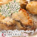 牡蠣 かき カキ 生 広島産 2.0kg L・2Lサイズ (58〜40粒前後入) 加熱用 セット ギフト 海鮮BBQ バーベキュー ((冷凍))