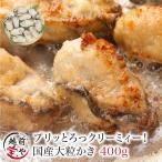 牡蠣 かき カキ 生 広島産 特大 400g (11粒前後入)  加熱用 セット 海鮮BBQ バーベキュー  ((冷凍)) 条件付送料無料