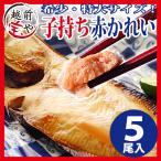 鰈魚 - 干物 越前産 子持ち特大カレイ 5枚入り 干物セット 真空パック 一夜干し ((冷凍))