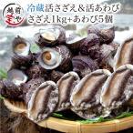 サザエ 1.0kg (天然 日本海産) & アワビ 5個 (養殖 国産) セット (活 さざえ 栄螺) (あわび 鮑) 海鮮BBQ バーベキュー  ((冷蔵))
