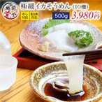 烏賊 - いかそうめん 刺身 (スルメイカ) 500g(10柵)  北海道産 ((冷凍))
