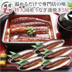 プレゼント うなぎ 蒲焼 5尾 セット ギフト 電子レンジ 湯せん 調理  ウナギ 鰻 送料無料  ((冷凍))