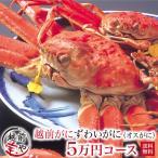 越前ガニ かに カニ ズワイガニ 4万5千円(1杯・2杯)((冷蔵))【#元気いただきますプロジェクト】
