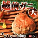 越前ガニ(大)福井県産越前がに・蟹 約 1kg〜1.3kg× 1杯 御歳暮 ギフト  [冷蔵]