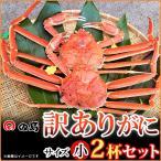 わけありガニ(2杯セット)福井県産越前がに(訳あり越前ガニ・蟹・かに) 1杯:約350g×2