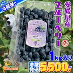 【クール冷蔵便】 愛媛県 宇和島産 生ブルーベリー サイズ込み 1kg 大きさ おまかせ 箱買い 1000グラム