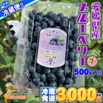 【クール冷蔵便】 愛媛県 宇和島産 生ブルーベリー サイズ込み 500g 大きさ おまかせ 箱買い 500グラム