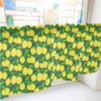 カーテン レモン 緑 1000w1000×h450mmポンジ