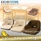 エクスジェル EXGEL モニートクッション MON01 MON02