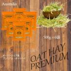 Yahoo!EXTOLEVEL[セール]OAT HAY PREMIUM チモシーに混ぜて嗜好性の増加ならオーツヘイプレミアム 500g x 6袋