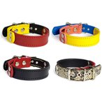 2cm幅の小型犬用革首輪:Small Type G5-FB*色は十色以上から、サイズは1cm単位でオーダー