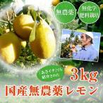 無農薬レモン3kg【愛媛県】(国産レモン)
