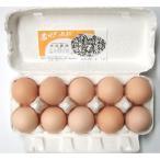 旭愛農の赤座さんの卵60個 (ゴトウさくら)(破損保障10個含む)
