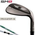 Titleist(タイトリスト)日本正規品 VOKEY DESIGN(ボーケイデザイン) SM8ウェッジ ブラッシュドスチール仕上げ スチールシャフト 2020モデル 「840R」