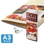 【SB】 サンワサプライ カラーレーザー用耐水紙・特厚A3サイズ LBP-WPF22MDP-A3