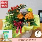 「季節の寄せカゴS(肥料セット)」 送料無料 プレゼント 花 誕生日 お祝い 記念日 母の日 父の日 敬老の日 クリスマス お歳暮 正月