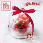 プリザーブドフラワー「カリーナ」 送料無料 プレゼント 花 誕生日 お祝い 結婚祝い ガラスドーム 枯れない花