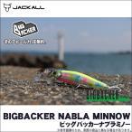 (5) ジャッカル ビッグバッカーナブラミノー(長さ:84mm 重さ:27g) (ソルトルアー)【メール便配送可】