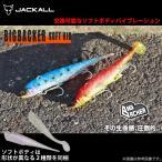 (5) ジャッカル ビッグバッカー ソフトバイブ (28g) (ソルトルアー/タチウオ)【メール便配送可】