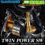 【エントリーでポイント10%】シマノ ツインパワーSW (8000HG)(2015年モデル) /(5)