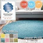 ショッピング円 ジャスパー 200×200cm 円形 正円 プレーベルの洗えるシャギーラグ 8色から選べる