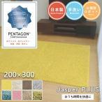 シャギーラグ - ジャスパー 200×300cm 大人気!プレーベルの洗えるシャギーラグ 8色から選べる 高級ナイロン糸使用