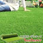 人工芝  1x1mロールタイプ 人工芝ガーデンターフ リ