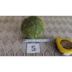 苔 苔玉 苔盆栽 ハイゴケ苔玉Sサイズ8cm