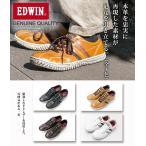 ���ˡ����� ���ɥ����� EDWIN EDM343  ����ե����ȥ��塼��