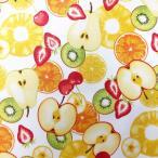 ラミネート 生地 大柄 フルーツ 手芸 断面図 苺 レモン キウイ オレンジ バナナ 果物 さくらんぼ パイナップル パイン 洋梨 ラフランス ラミネート生地 つや消し